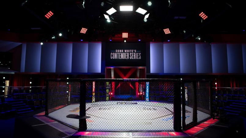 Inchiesta: La Crisi delle MMA Italiane e la Necessità di allenarsi negli USA, cosa ci dicono i numeri 1