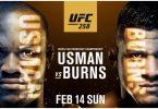 Risultati UFC 258: Usman vs. Burns 1