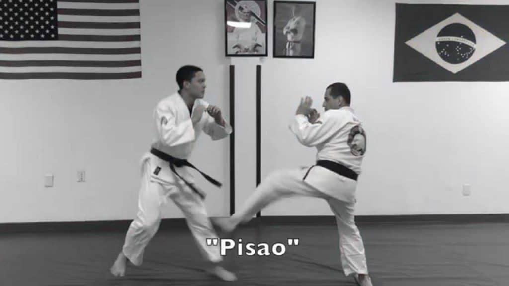 Parliamo del pisão: il side kick del Gracie Jiu-jitsu 2