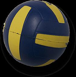 palla per giochi camera fun