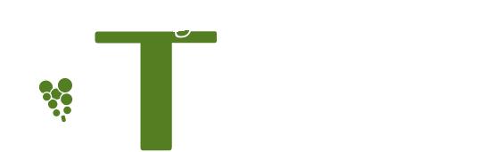 lifevitisom logo white
