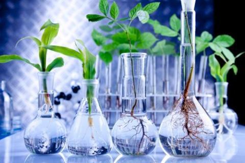 Giovani scienziati nei laboratori Biorest - cover