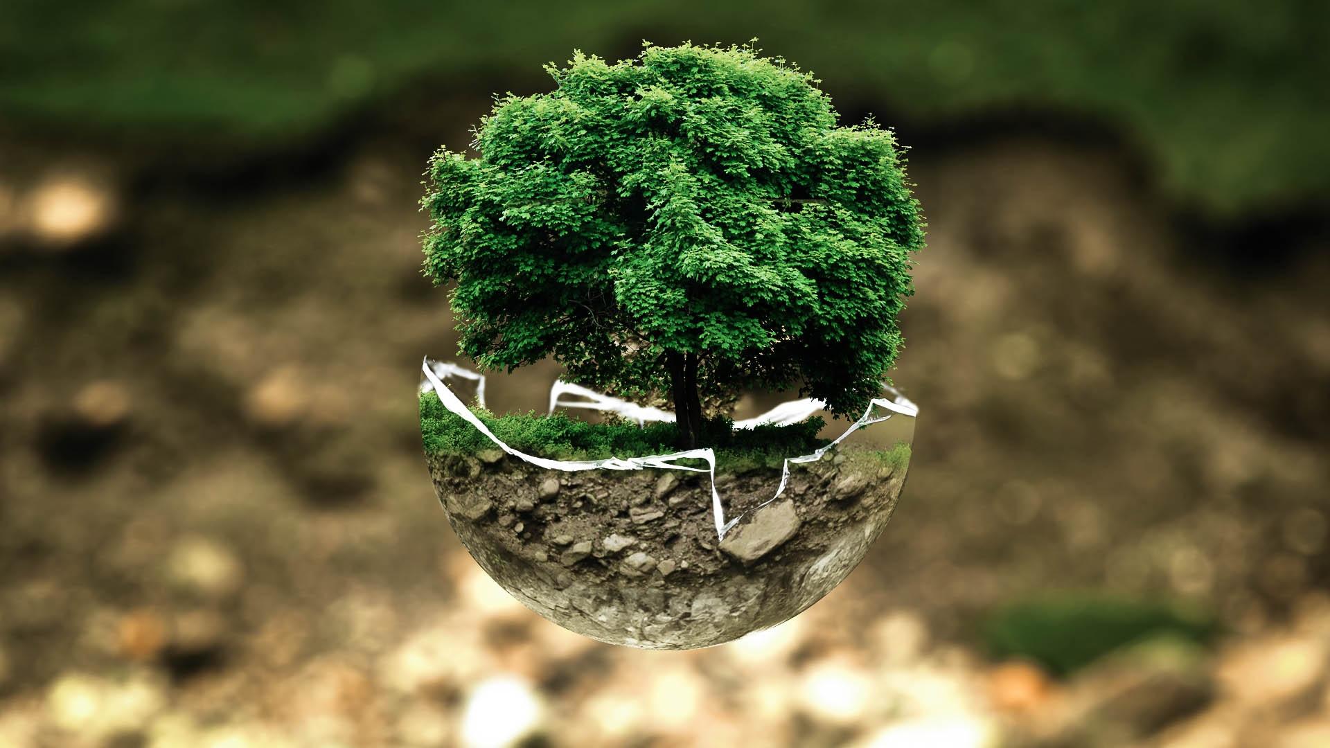 Inquinamento del suolo - cover