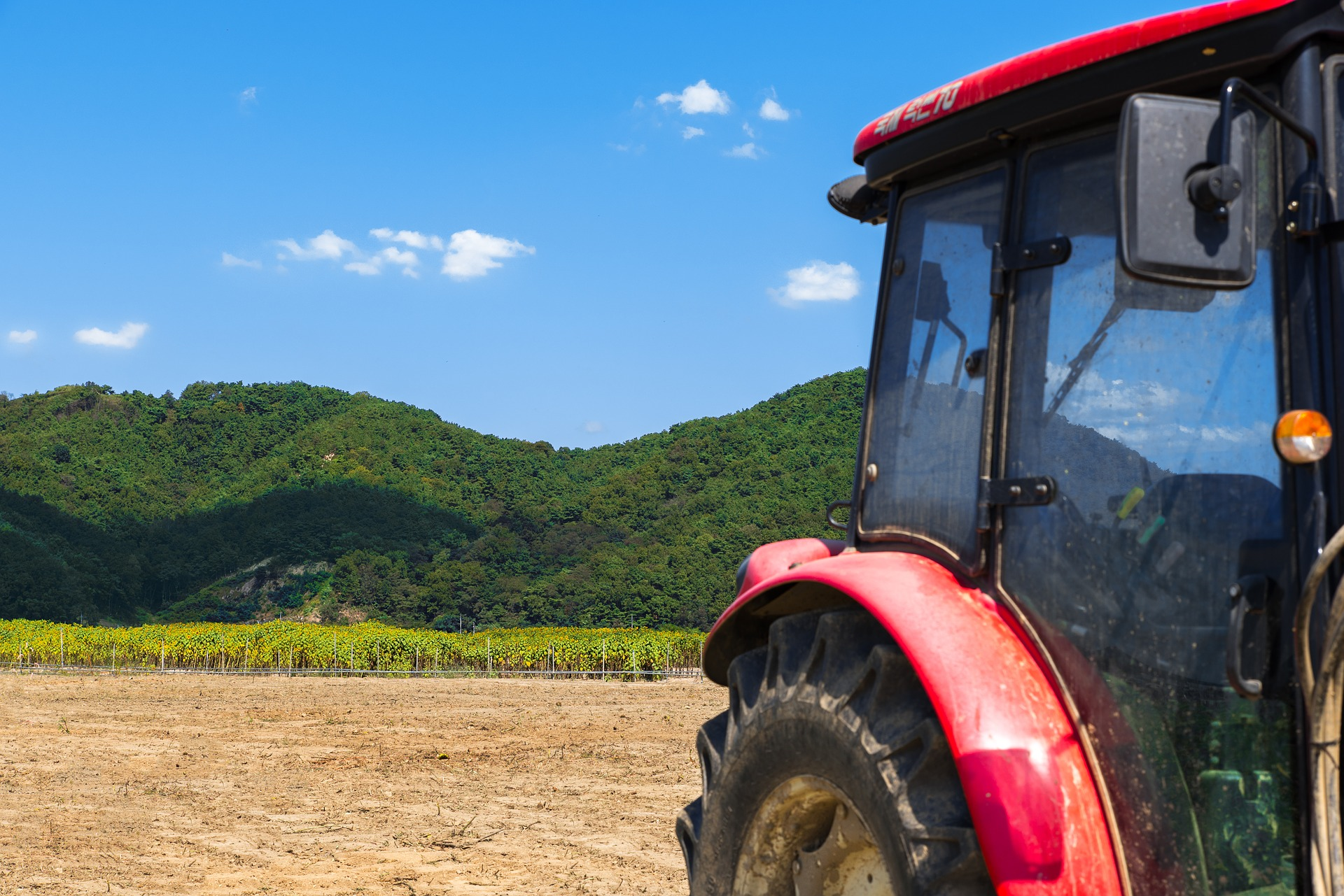VITISOM alla fiera agricola INDAGRA - cover