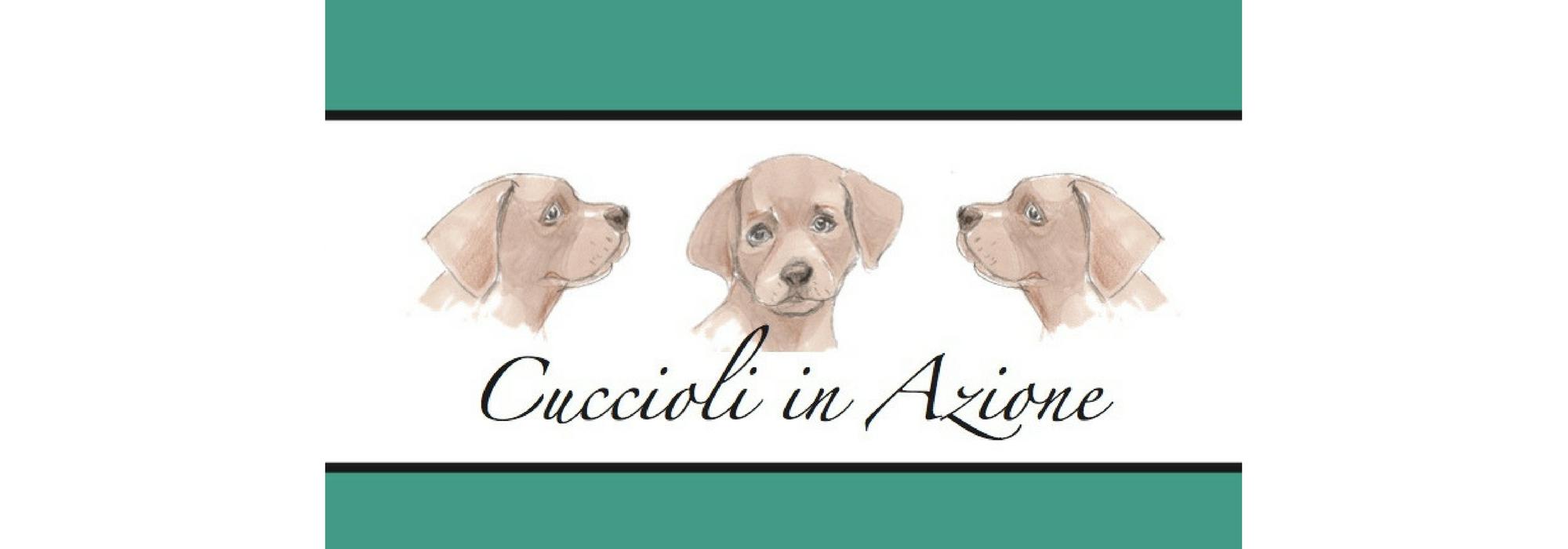 Cuccioli in Azione - cover