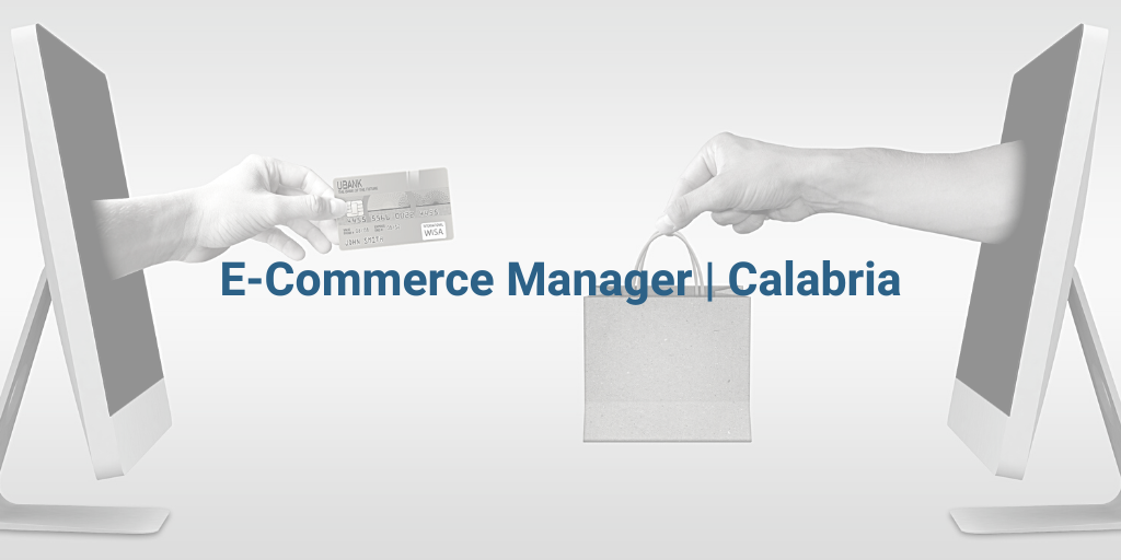 E-COMMERCE MANAGER - cover