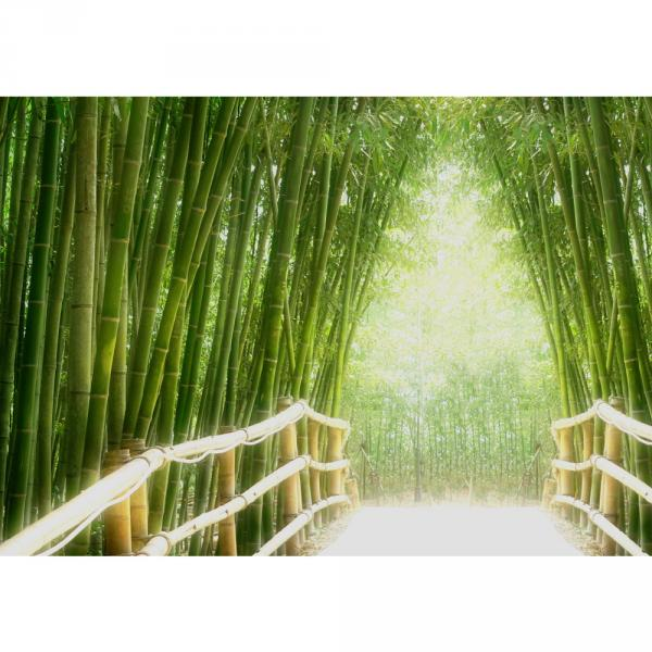 Vlies Fototapete 350x245 cm PREMIUM PLUS Wand Foto Tapete Wand Bild Vliestapete - BAMBOO WALK - Bambusweg Bambuswald Dschungel Asia Asien Bamboo Way Wald - no. 002