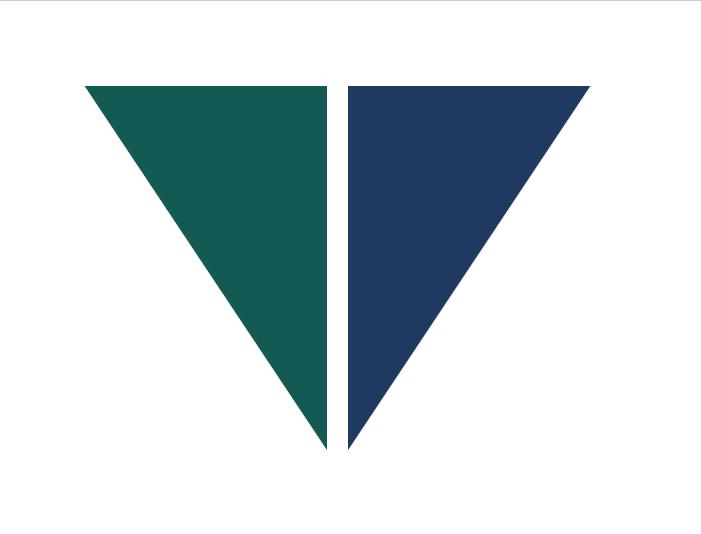 Logo   vt fintech