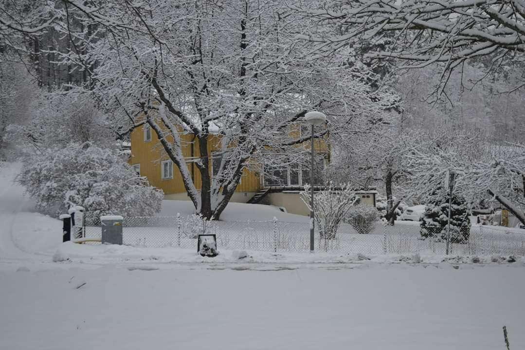 municipio de Lidingö