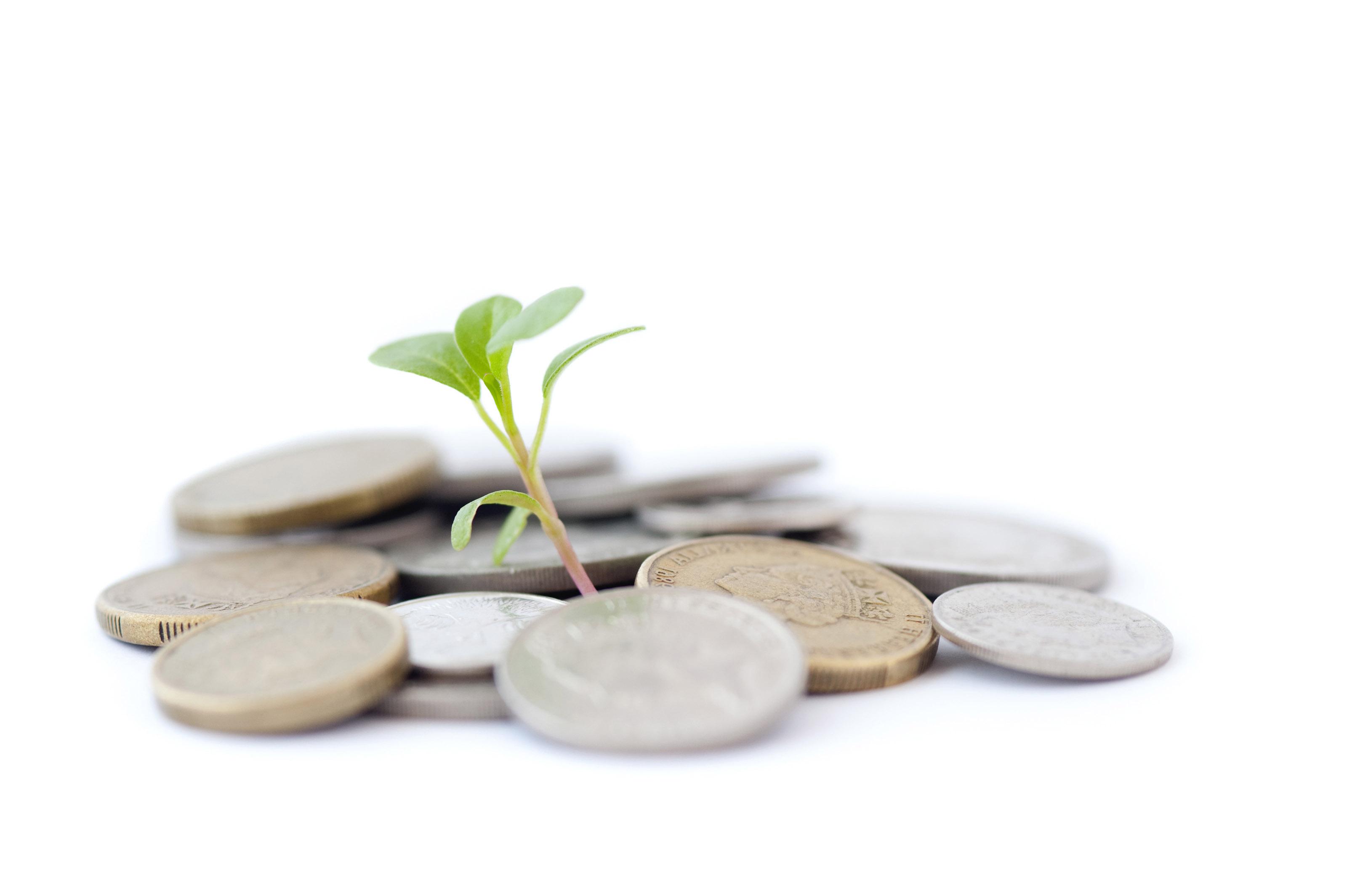 Kolejny rok to początek intensywnych inwestycji małych i średnich firm