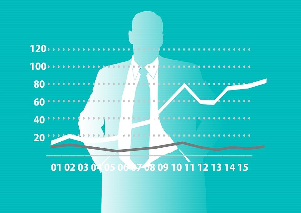 Raport płacowy 2015