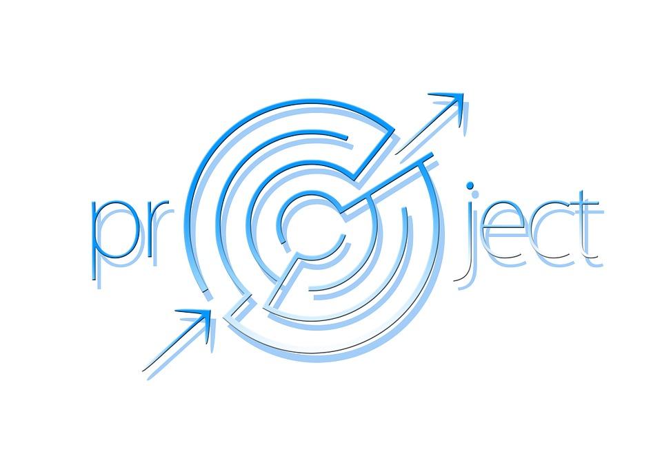 DICE – model powodzenia projektu