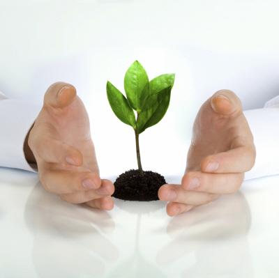 Pomoc dla Start-up, czyli na co mogą liczyć przedsiębiorcy rozpoczynający działalność