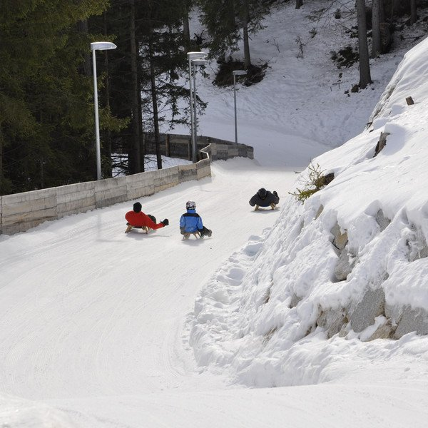 Activities Sledging in San Martin and San Vigilio