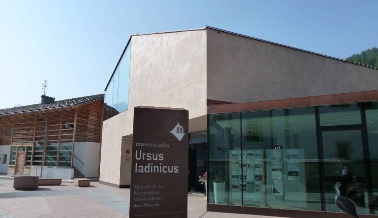 Aktivitäten Museum Ladin Ursus Ladinicus