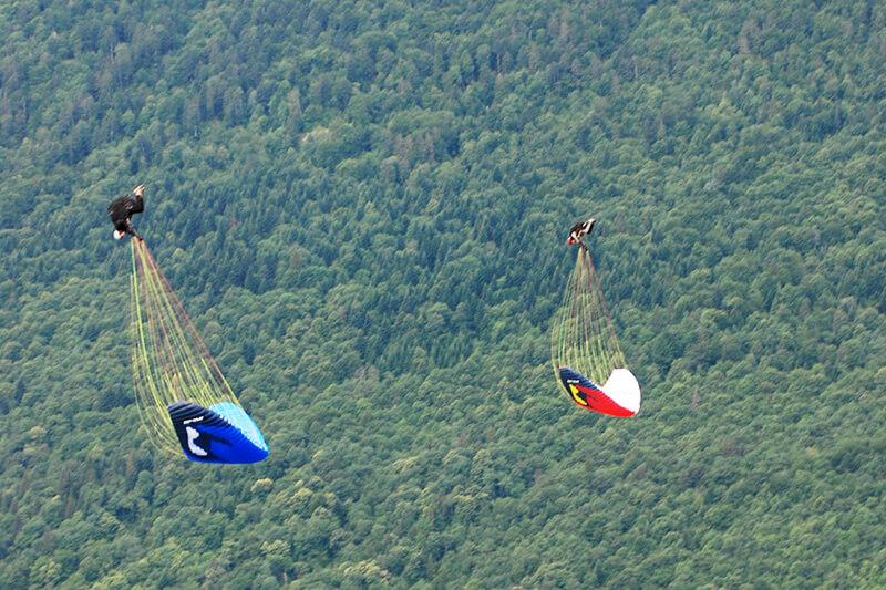 Vol en parapente acrobatique