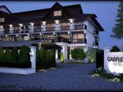Hoteluri Viseu de Sus