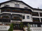 Hoteluri Silistea Crucii