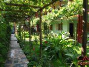 Hoteluri Costinesti