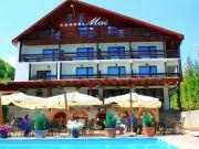 Hoteluri Rasinari