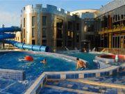 Hoteluri Surduc