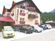 Hotels Busteni