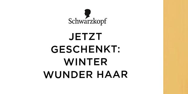 Für Winter-Wunder-Haare: Gliss Kur Winter Repair testen!