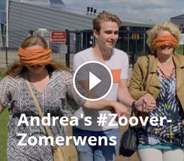Zoover Weblog
