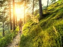 Entspannung und Erlebnis im Bayerischen Wald