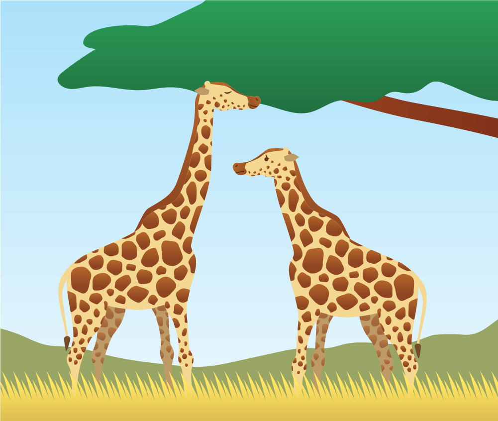 Why do giraffes have long necks? - Humbot - Your Smart ...