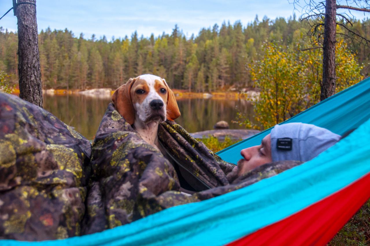 hcordan ligge i telt med hund