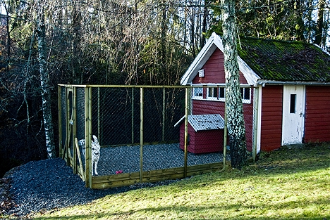 Svært www.hunden.no PT-49