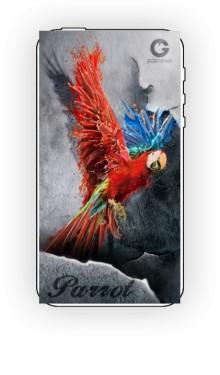 Czerwona papuga na tle ściany