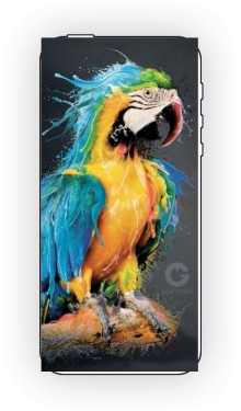 Niebieska Papuga etui iPhone 5 5s