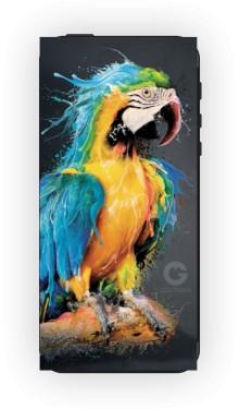 Niebieska Papuga etui iPhone 6