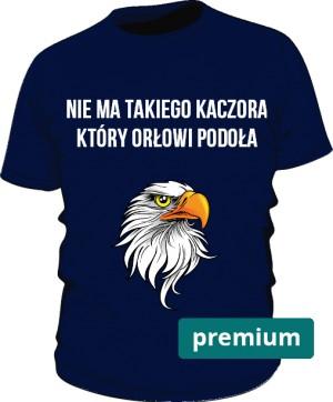 koszulka orzeł niebieska