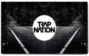 Puzzle logo trap