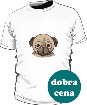 koszulka bawełniana