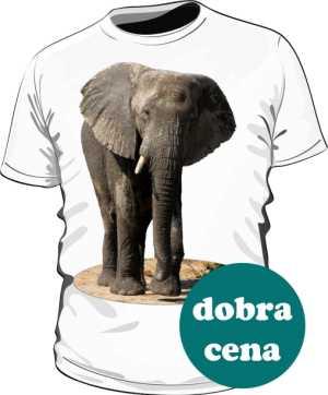Słoń2 męska