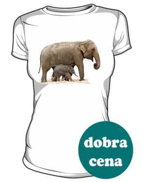 Słoń damska