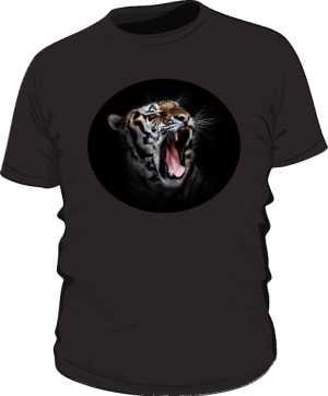 Tygrys męska