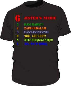 Koszulka z nadrukiem 315058