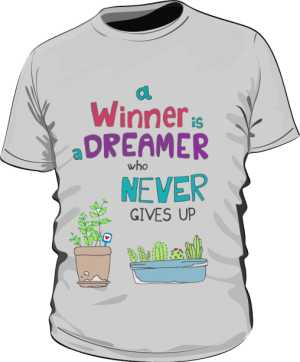 Winner dreamer koszulka basic szara