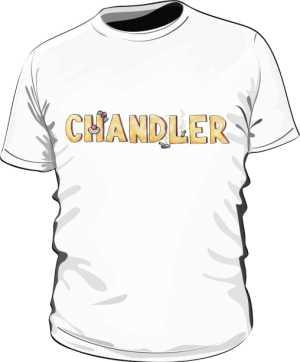Koszulka Biała Friends Męska Chandler