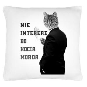 Kocia Morda poduszka