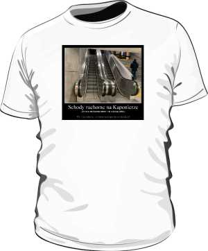Koszulka męska  z Kaponiery