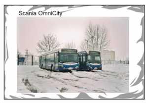 Flaga Scania OmniCity