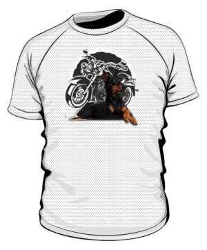 Koszulka męska Doberman