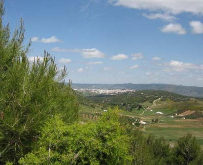 8 Bedroom Country House for Sale in Ronda