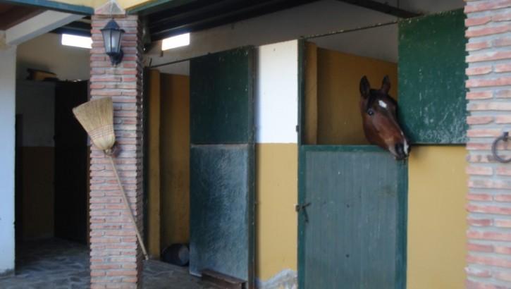 3 Bedroom Equestrian for Sale in Alora